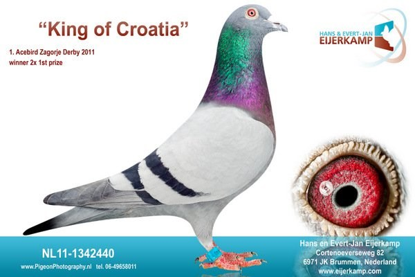 King of Croatia