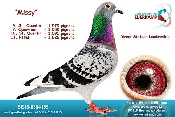 Missy 1e Feluy Kring de IJssel<br>4, 5, 6 tegen 1.614 duiven jong 61% prijs <br>- 29 bij de eerste 100