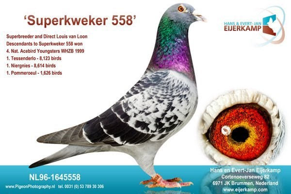 Superkweker 558
