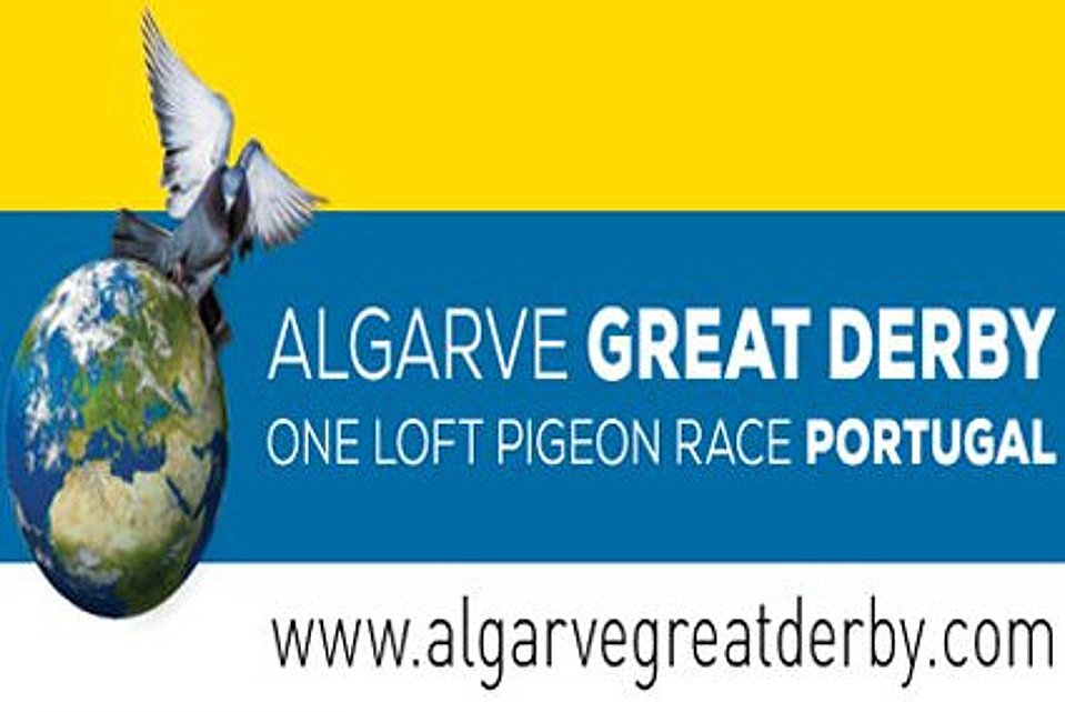Offspring Eijerkamp pigeons dominate the Algarve Great Derby One Loft Race with 1, 2 and 7 in the final race and the 1st Ace pigeon
