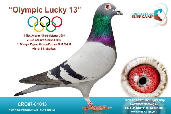 Olympic Lucky 13