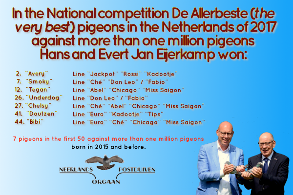 Phenomenal result in National comptition De Allerbeste 2, 7, 12, 26, 27, 41 and 44 against more than one million pigeons