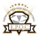 Introducing Eijerkamp Pigeon Quality Criteria (EPQC)