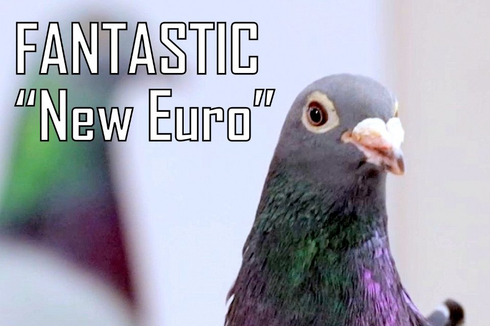 FANTASTIC New Euro presented