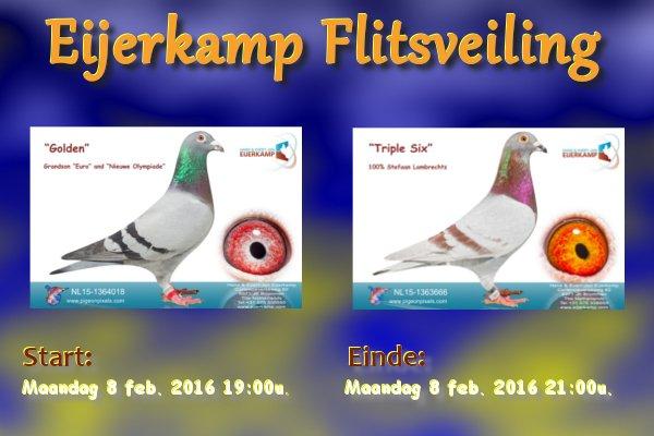 Eijerkamp Flitsveiling week 5-2016