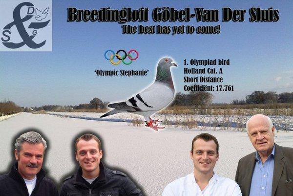 Blue Bullet een fenomeen in de Nederlandse duivensport