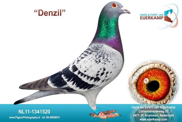 Denzil