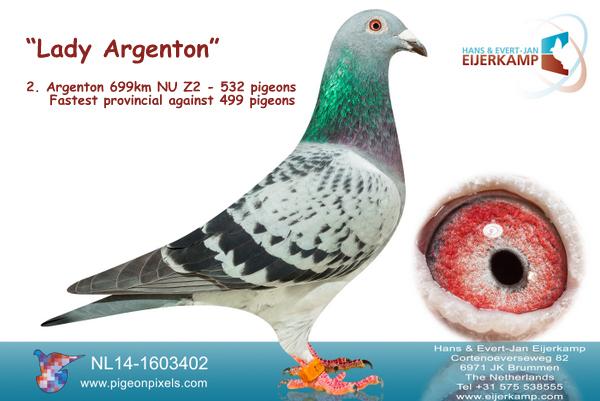 2, 6, 8 enz Argenton NU Zone 2 tegen 532 duiven. 66% prijs 14 prijzen 1:10