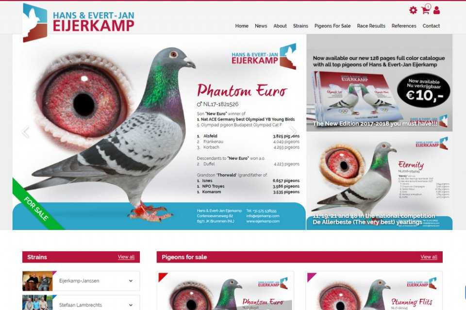 Our new website launched.