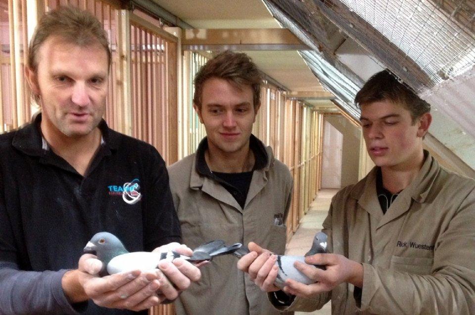 Kees van de Beek (Heerde) wins 1st Marche against 2,602 pigeons