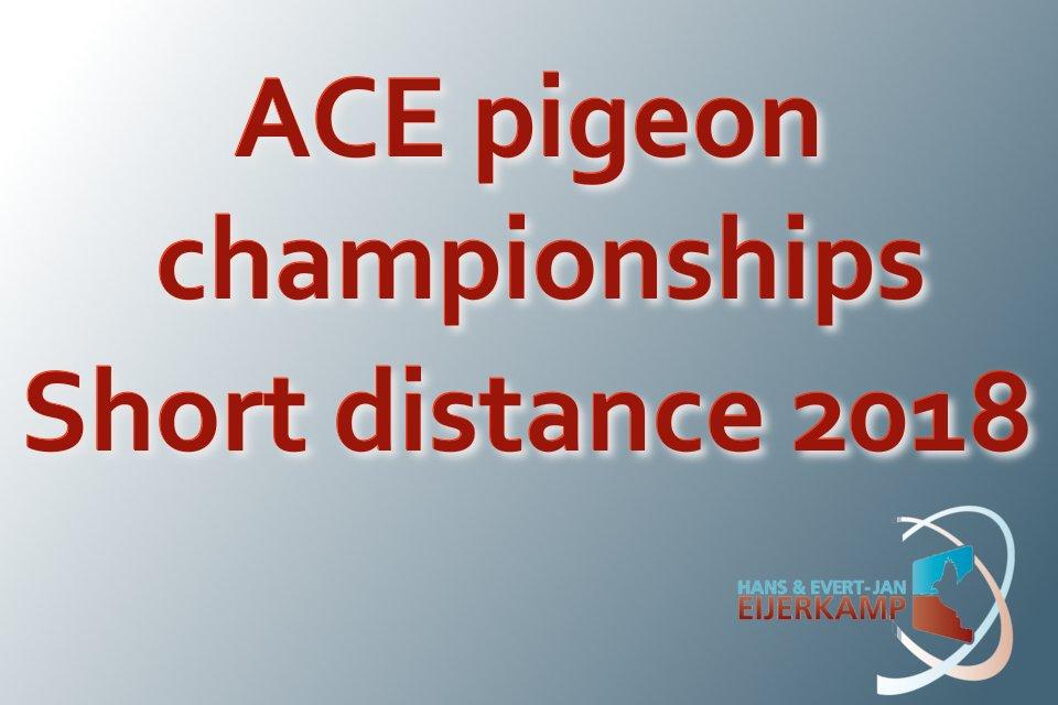 Provincial ACE pigeons Short Distance 2018
