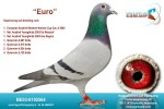 Kleinkind Euro onze eerste op Quievrain