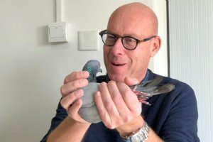 Evert-Jan Eijerkamp and Henk Jurriens handled the most expensive pigeon in the world, 1. Ace pigeon Pioneer Club 2018, at their visit to China
