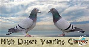 1st High Desert Yearling Classic Nevada