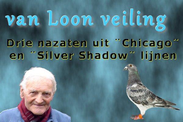 Veiling 3 Eijerkamp-van Loon duiven